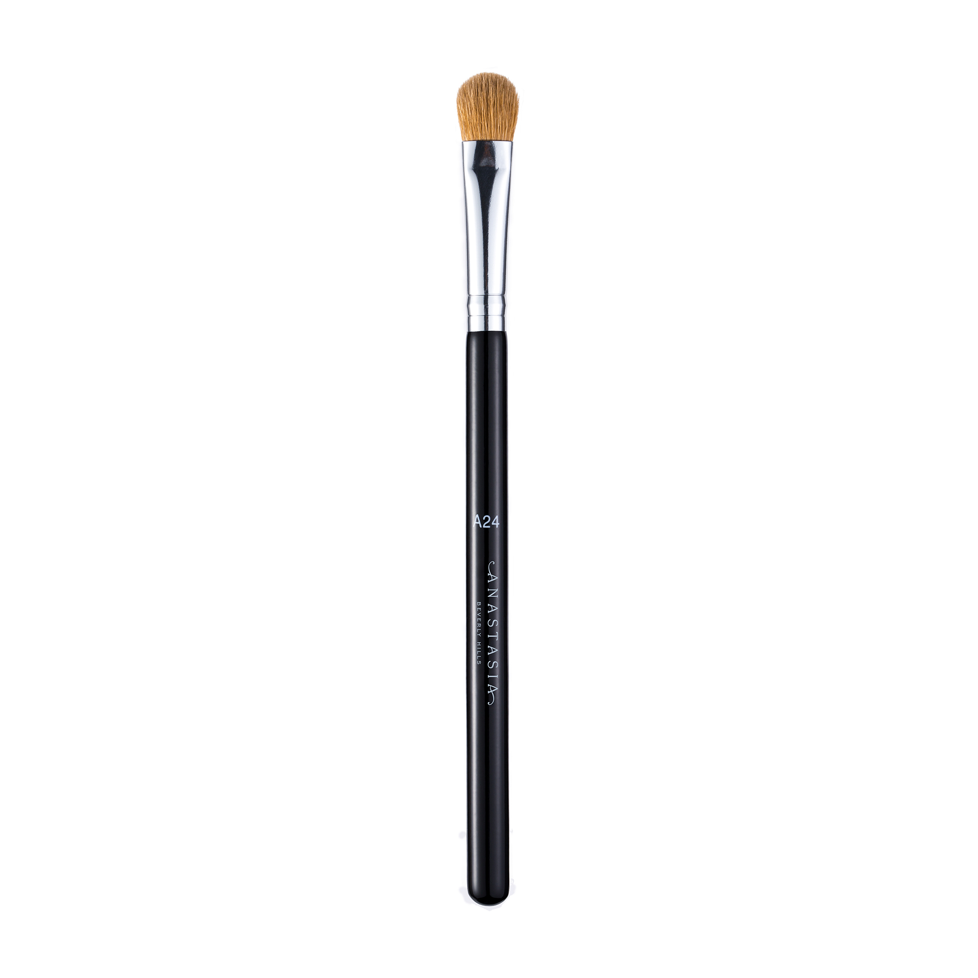 Pro Brush- A24 Medium Shadow Brush
