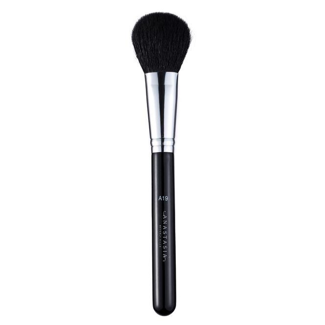 A19 Pro Brush - Blush Brush